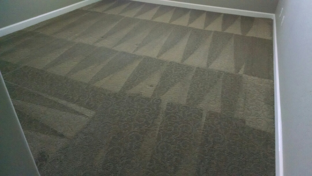 Mesa, AZ - Cleaned carpet for a new PANDA family in Mesa AZ 85207.