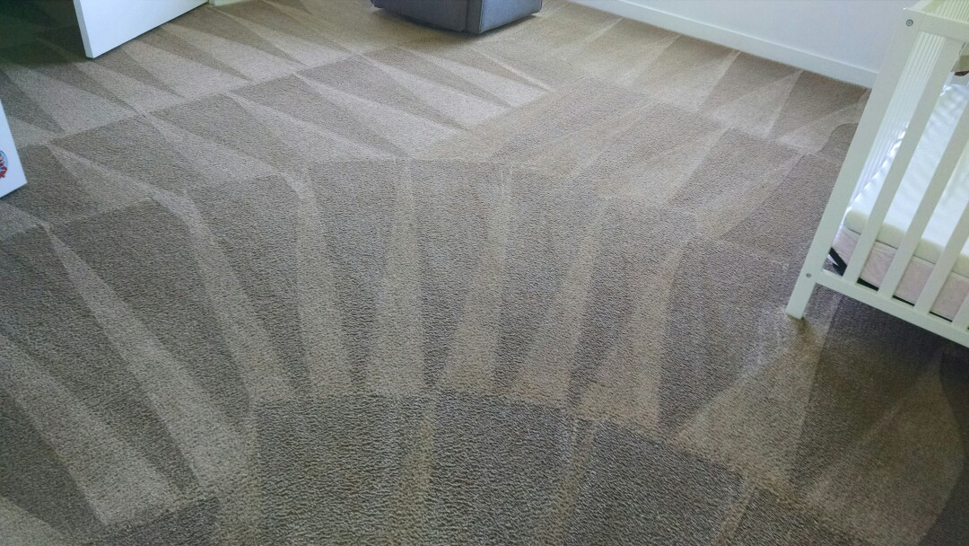 Mesa, AZ - Cleaned carpet, upholstery & an area rug for a new PANDA family Mesa AZ 85205.