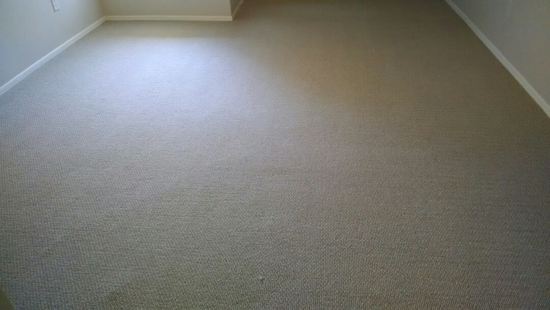 Mesa, AZ - Cleaned carpet for a new commercial PANDA customer in Mesa AZ 85202.