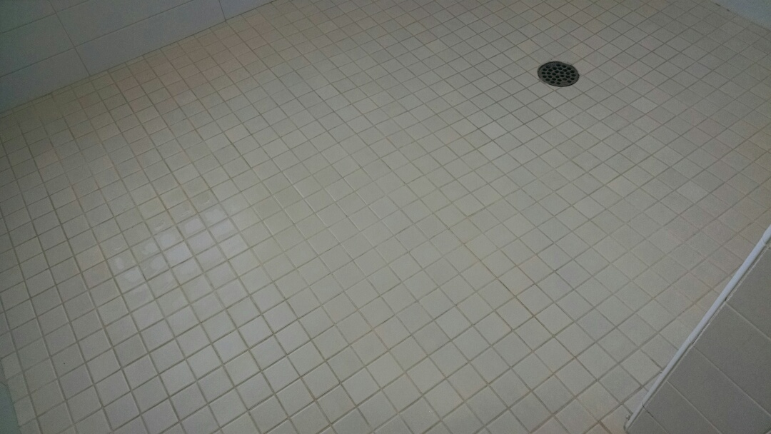 Cleaned tile and grout in a shower for a regular PANDA family in Mesa AZ 85205.