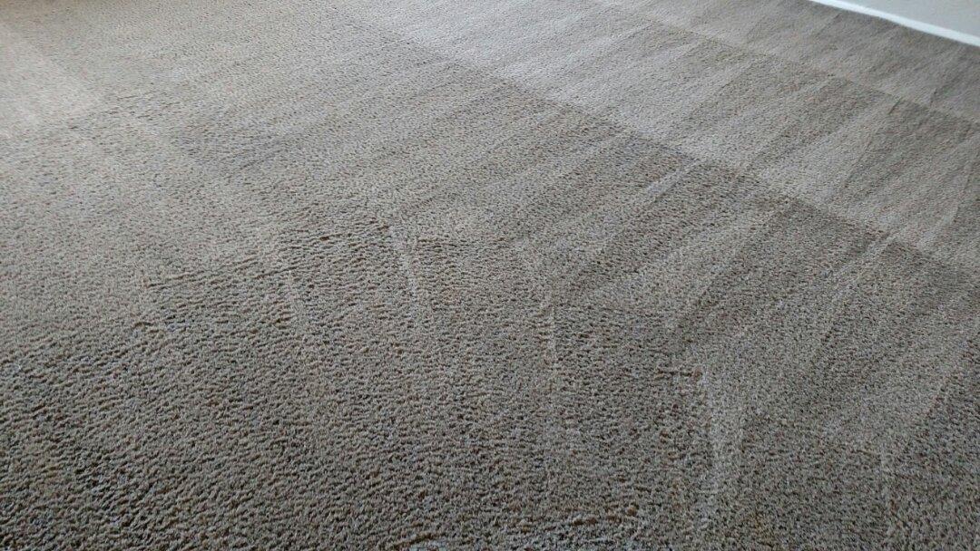 Gilbert, AZ - Cleaned carpet for a new PANDA family in Gilbert AZ 85298.
