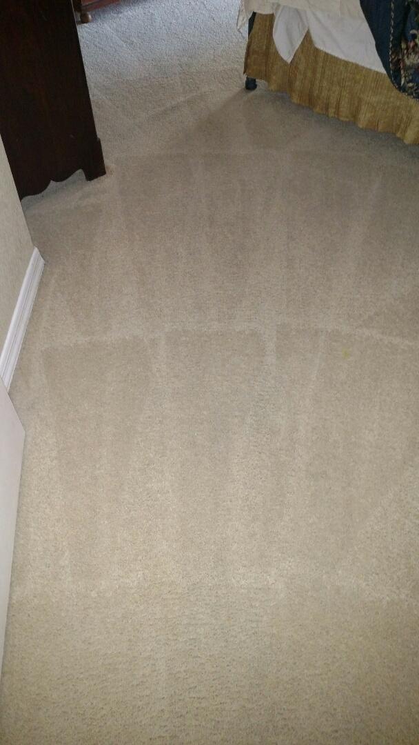 Gilbert, AZ - Cleaned carpet, tile & area rugs for a new PANDA family in Gilbert AZ 85298.