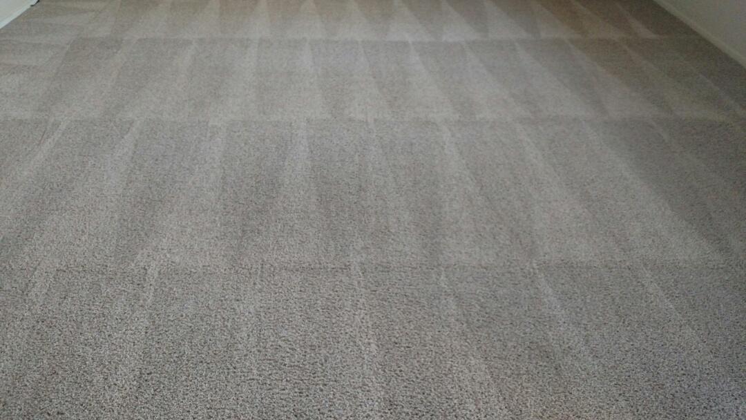Gilbert, AZ - Cleaned carpet for a new PANDA customer in Gilbert AZ 85296.
