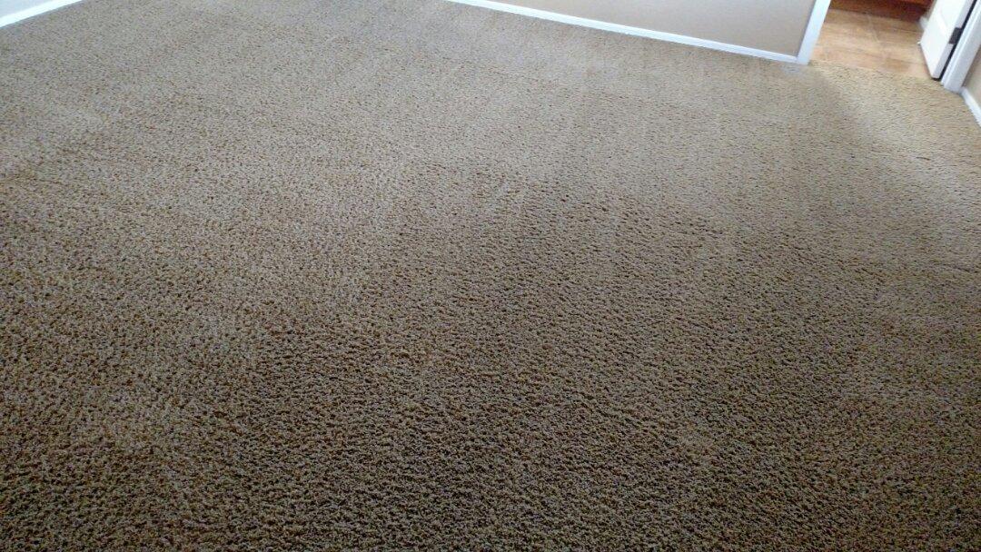 Gilbert, AZ - Cleaned carpet for a new PANDA customer in The Garden's, Gilbert AZ 85296.