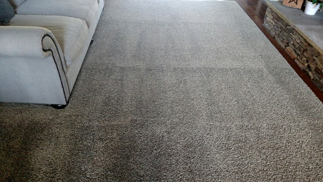 Cleaned carpet for a new PANDA family in Scottsdale AZ 85260.