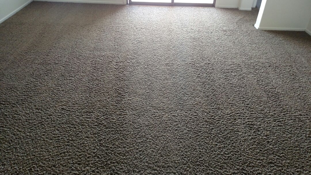 Cleaned carpet for a new PANDA family in Mesa AZ 85204.