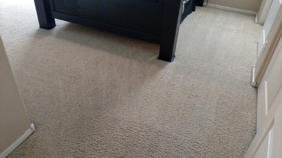 Chandler, AZ - Cleaned carpet for a regular PANDA family in Chandler, AZ 85249.