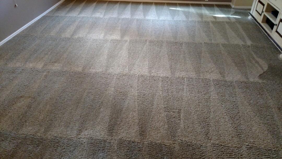 Cleaned carpet and tile & grout for a regular PANDA family in Lyon's Gate Gilbert AZ 85295.
