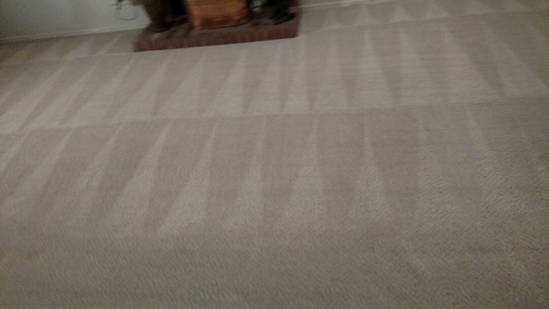 Chandler, AZ - Cleaned carpet for a new PANDA family in Chandler AZ 85226.