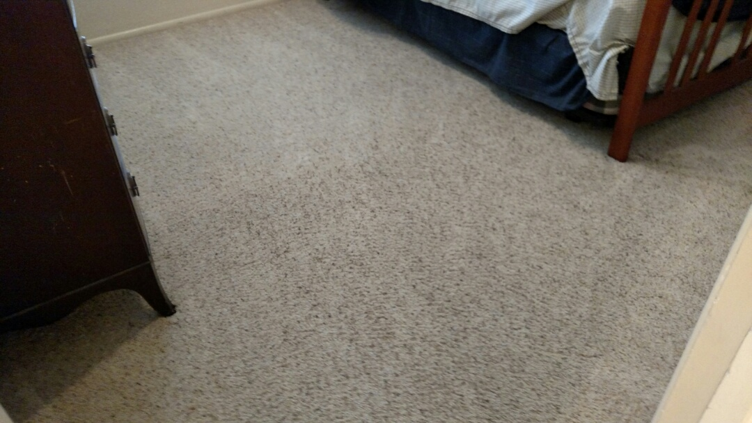 Cleaned carpet for a regular PANDA family in Mesa AZ 85205.