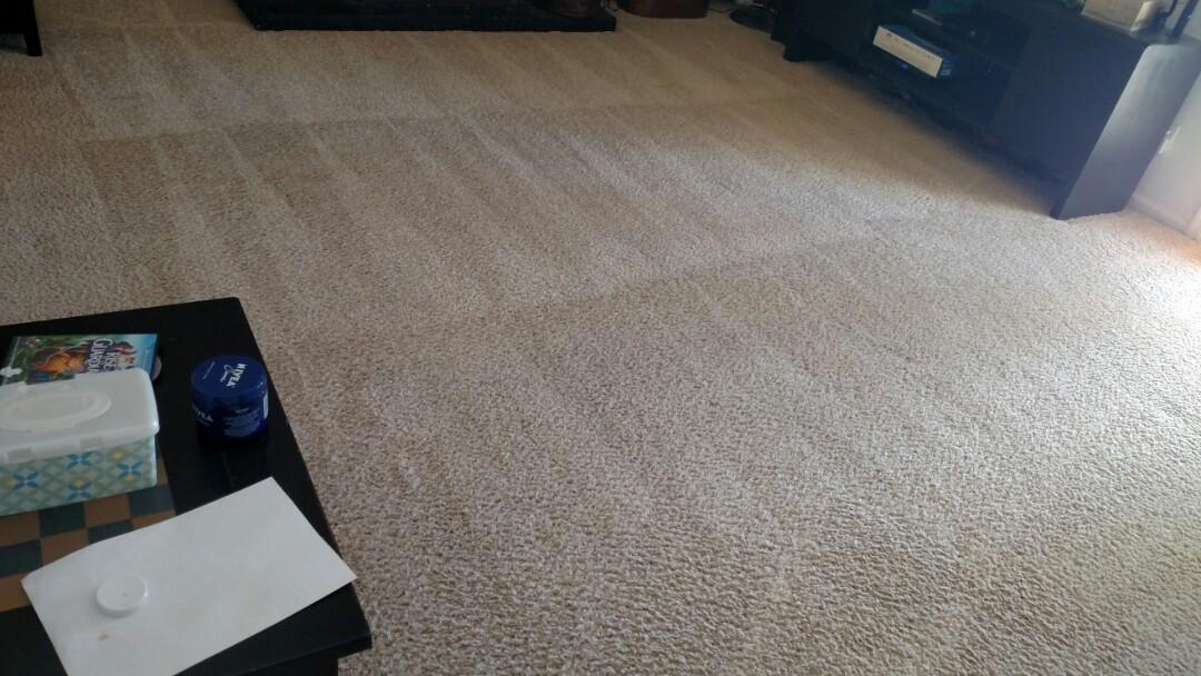 Cleaned carpet for a regular PANDA family in Gilbert AZ 85233.