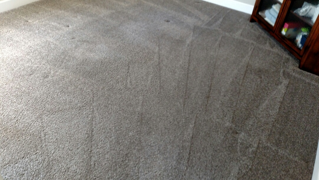Cleaned carpet and extracted urine for a regular PANDA family in Gilbert AZ 85296.