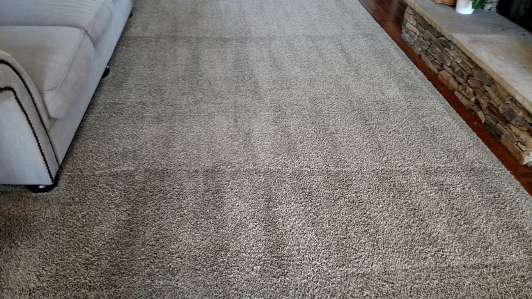 Cleaned area rugs & extracted pet urine for a regular PANDA family in Scottsdale AZ 85260.