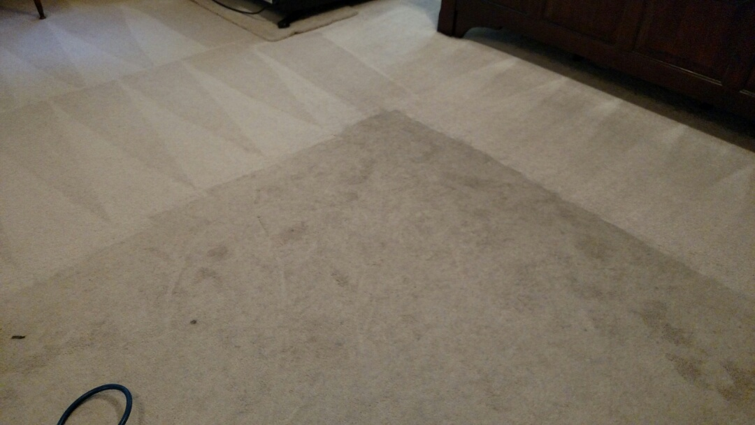 Chandler, AZ - Cleaned carpet, tile and grout for a new PANDA family in Chandler AZ 85226.