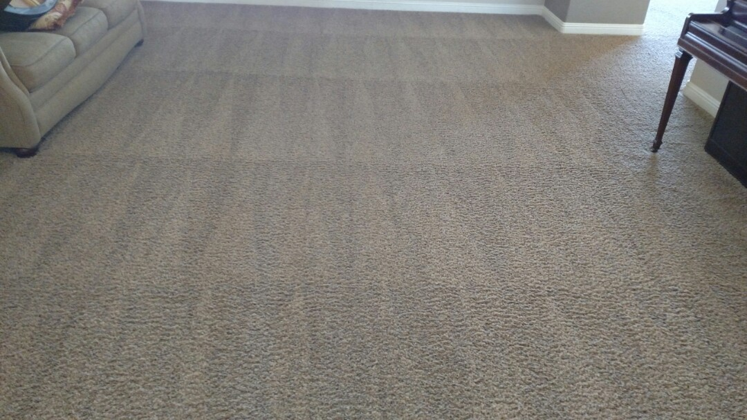 Cleaned carpet and extracted pet urine for a new PANDA family in Gilbert AZ 85234.