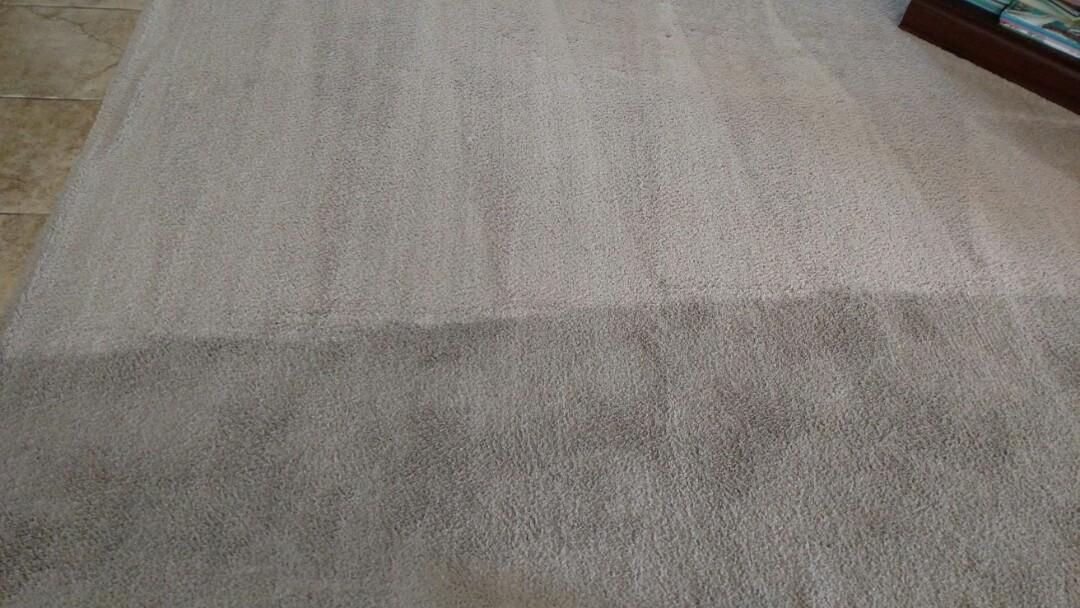 Cleaned carpet for a new PANDA family and Gilbert AZ 85296.