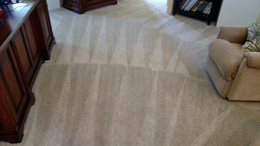 Clean carpet and extracted pet urine for a regular PANDA family in Gold Canyon AZ 85118.