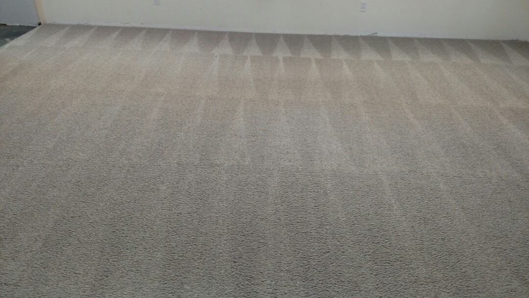 Cleaned carpet and extracted a large spot for a new PANDA family in Queen Creek, AZ 85142.