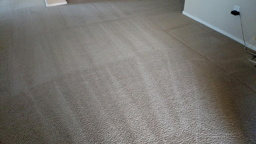 Cleaned carpet for a new PANDA customer in Chandler AZ 85225.