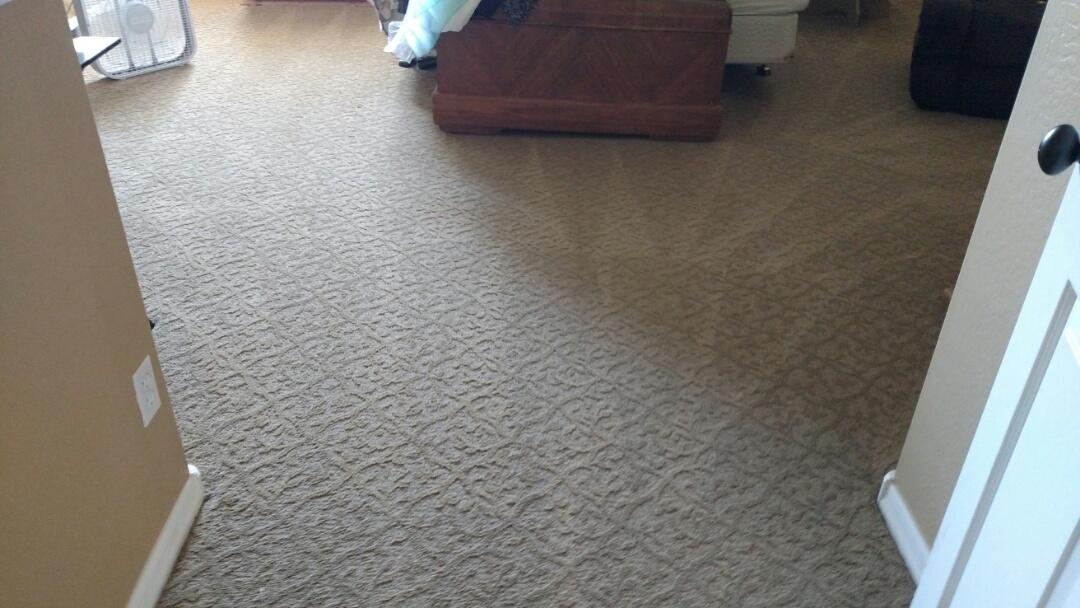 Cleaned carpet for a new PANDA family in Chandler AZ 85249