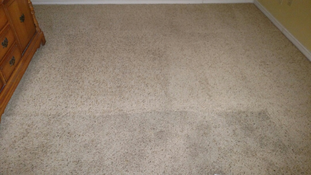 Cleaned carpet for a regular PANDA Family in Mesa, AZ 85205