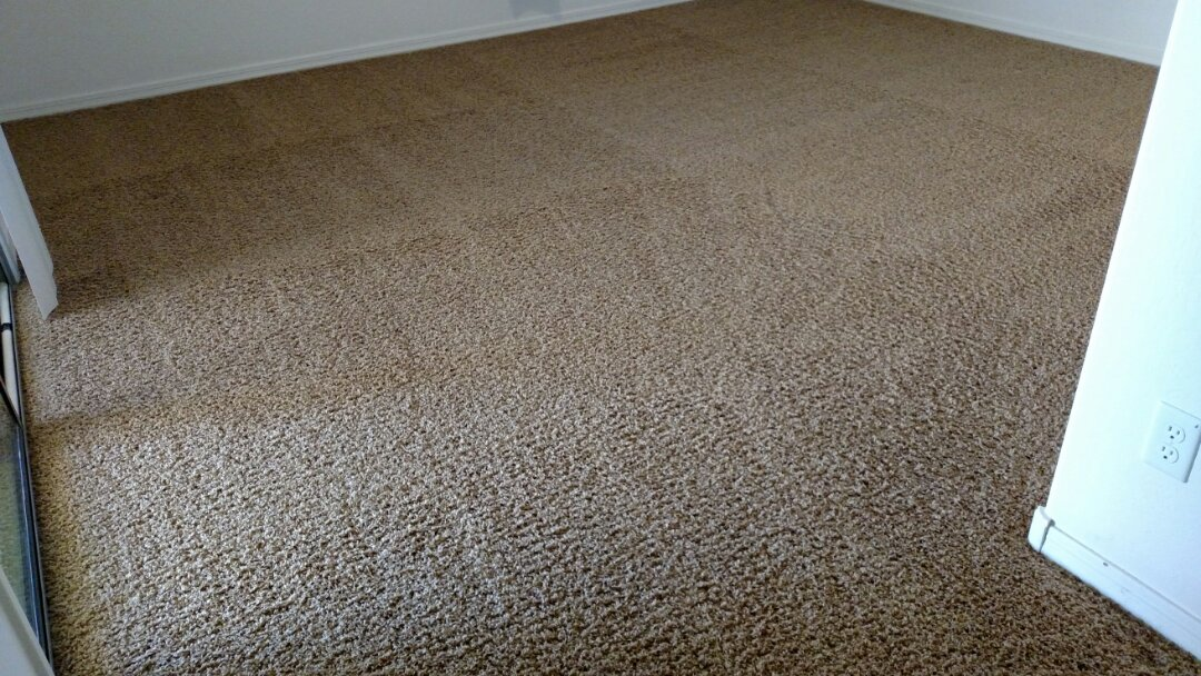 Cleaned carpet and extracted pet urine for a new PANDA family in Queen Creek, AZ 85143.