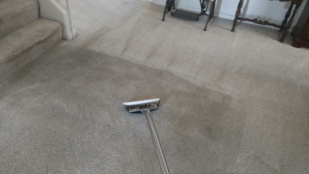 Chandler, AZ - Cleaned very soiled carpet for a new PANDA customer in Chandler AZ 85286.