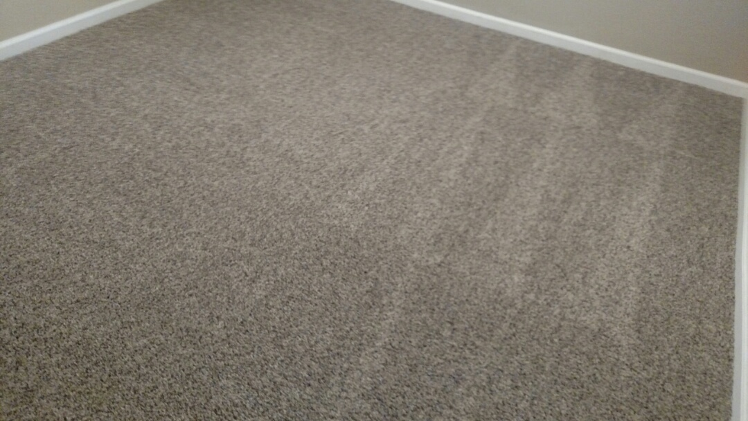 Cleaned carpet for a regular PANDA Family in Gilbert, AZ 85233.