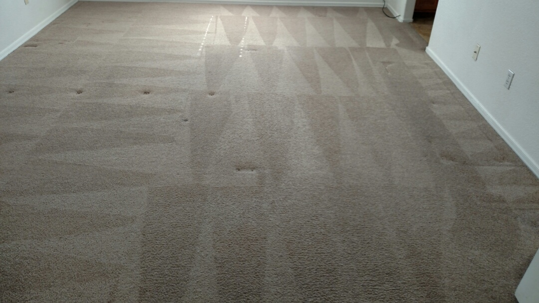 Cleaned carpet for a regular PANDA Family in Chandler, AZ, 85226.