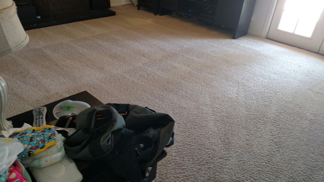 Gilbert, AZ - Cleaned carpet, extracted urine, & cleaned upholstery for a regular PANDA family in Gilbert, AZ 85233.