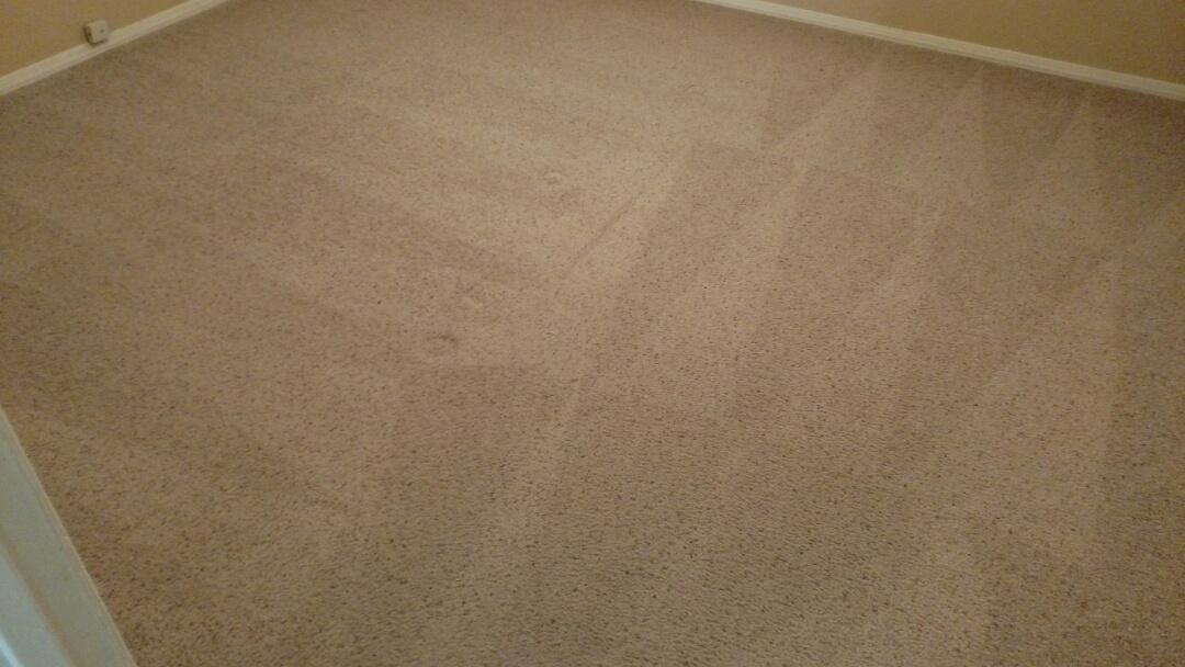 Cleaned carpet and tile for a regular PANDA customer in Chandler, AZ 85225.