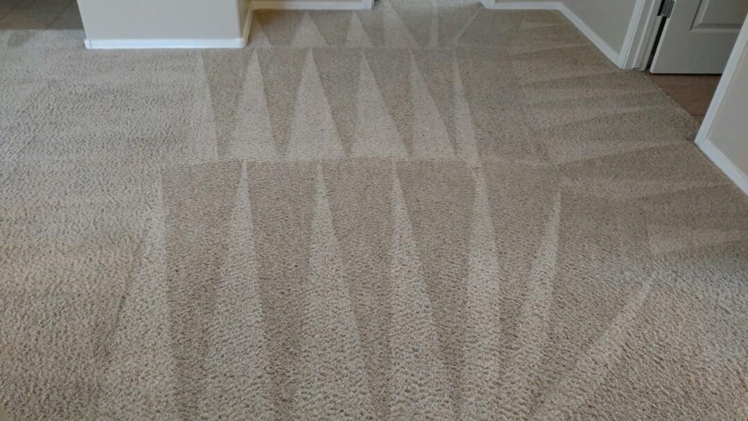 Cleaned carpet for a regular PANDA customer in Chandler, AZ 85248.