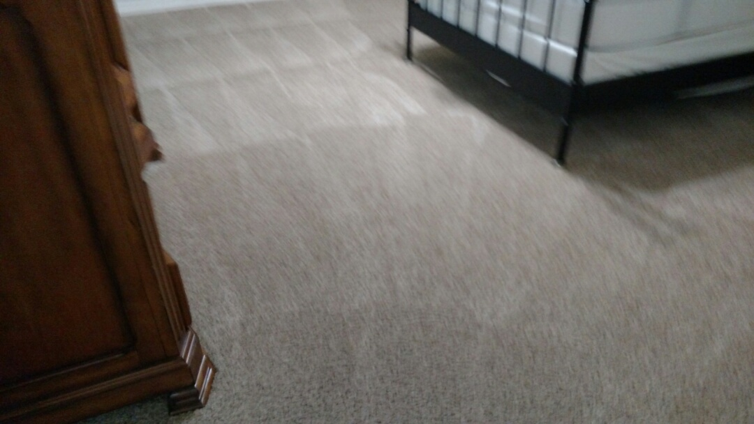 Gilbert, AZ - Cleaned carpet and extracted pet urine for a new PANDA family in Gilbert, AZ 85296.