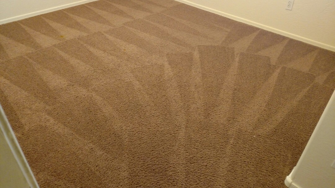 Cleaned carpet and extracted pet urine for a new panda customer in Ashley Heights, Gilbert, AZ 85295.