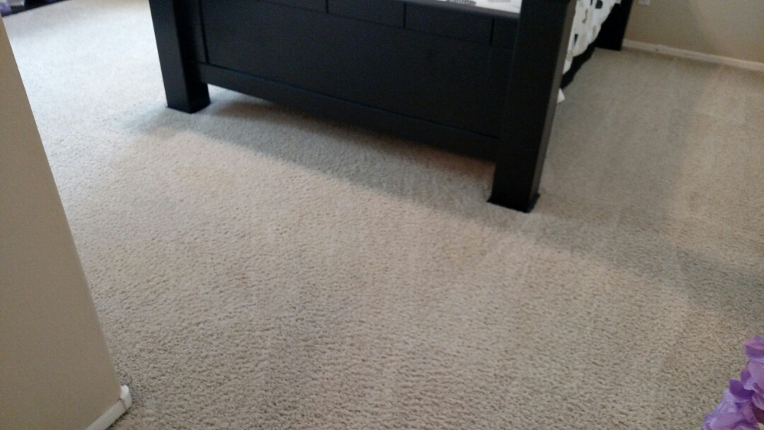 Chandler, AZ - Cleaned carpet and extracted pet urine for a regular PANDA Family in Chandler, AZ, 85249.