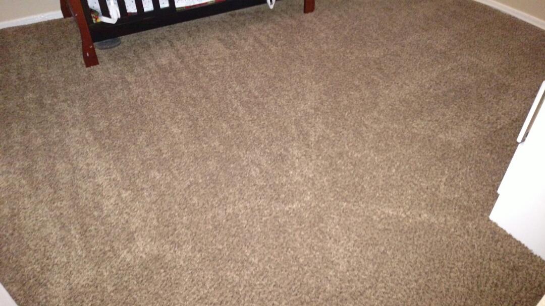 Cleaned carpet for a regular PANDA Family in Mesa, AZ 85208.