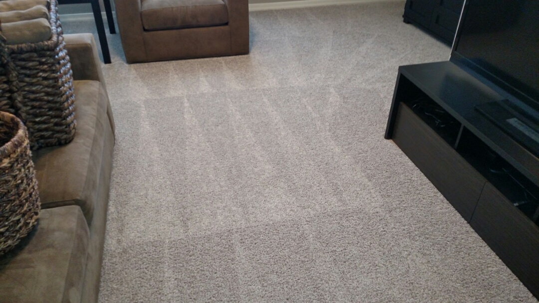 Gilbert, AZ - Cleaned carpet and extracted pet urine for a regular PANDA customer in The Willows, Gilbert, AZ 85295.