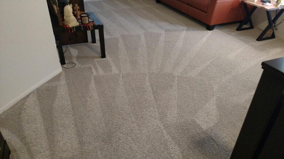 Cleaned carpet for a regular PANDA customer in Gilbert, AZ 85296.