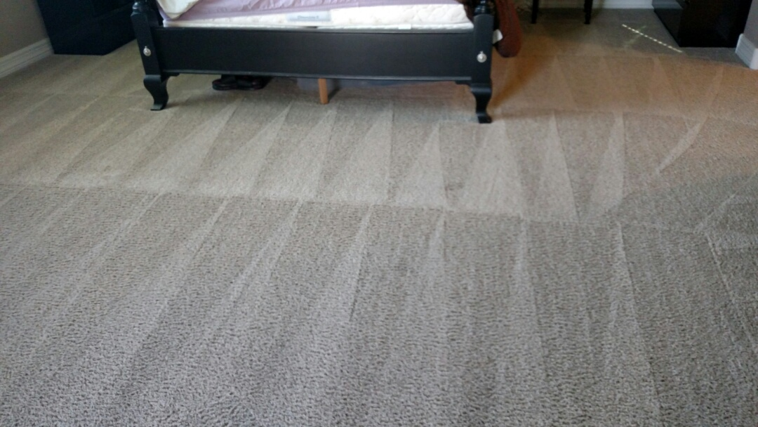 Chandler, AZ - Cleaned carpet, tile and grout for a new PANDA family in Chandler, AZ 85286.