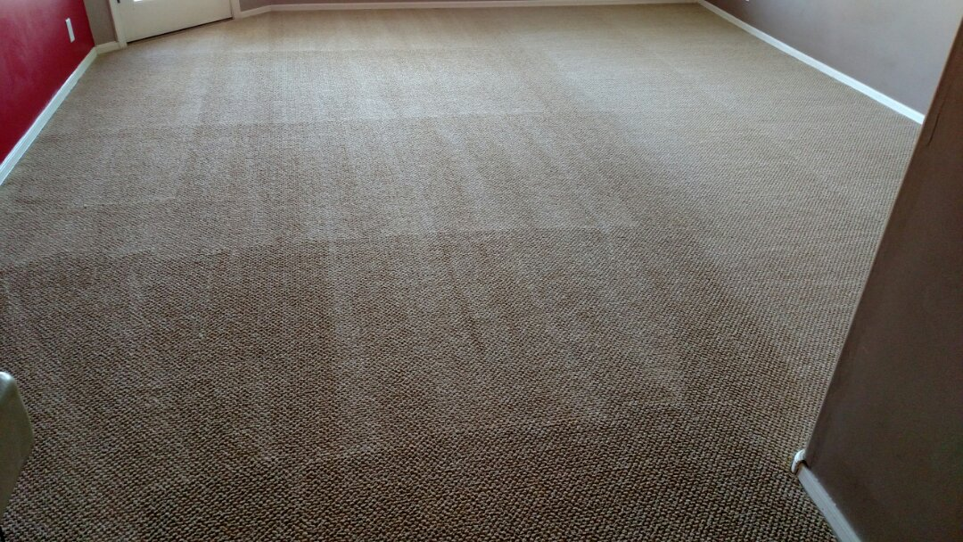 Cleaned carpet and extracted pet urine for a new panda family and the islands, Gilbert, AZ 85233.