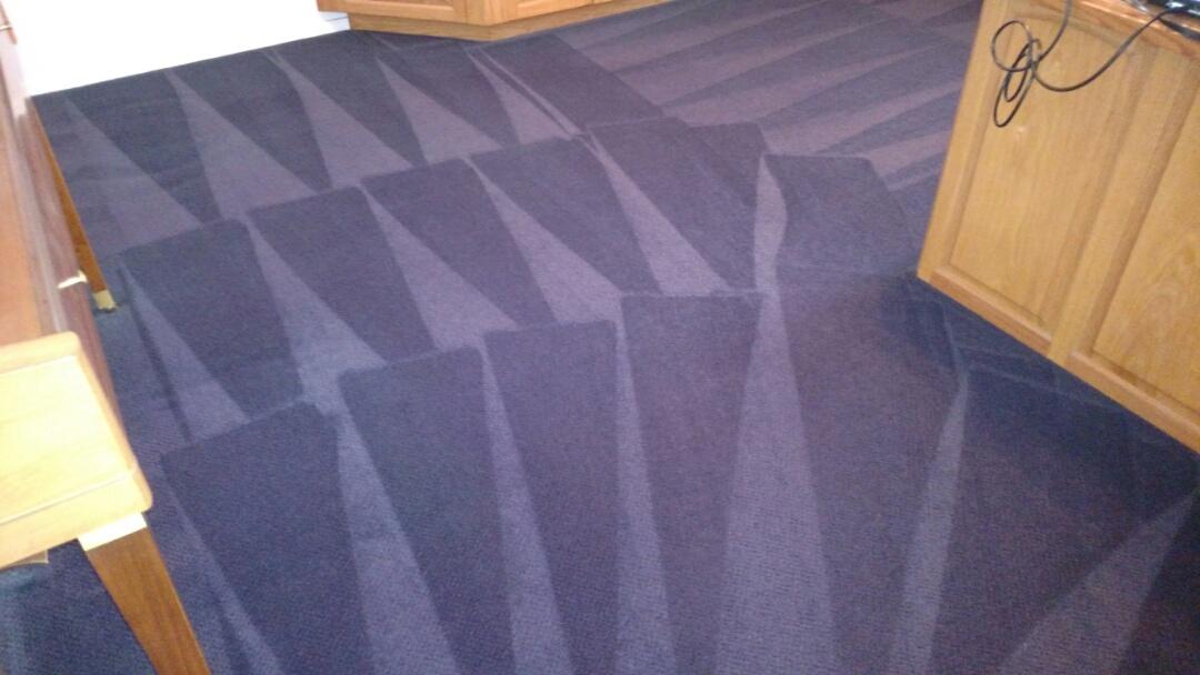 Cleaned carpet for a new PANDA family in Chandler, AZ 85226.