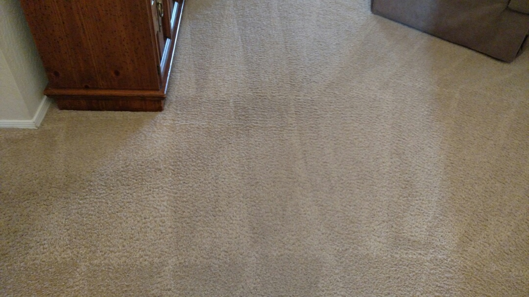 Cleaned carpet for a regular PANDA Family in Tempe, AZ 85248.