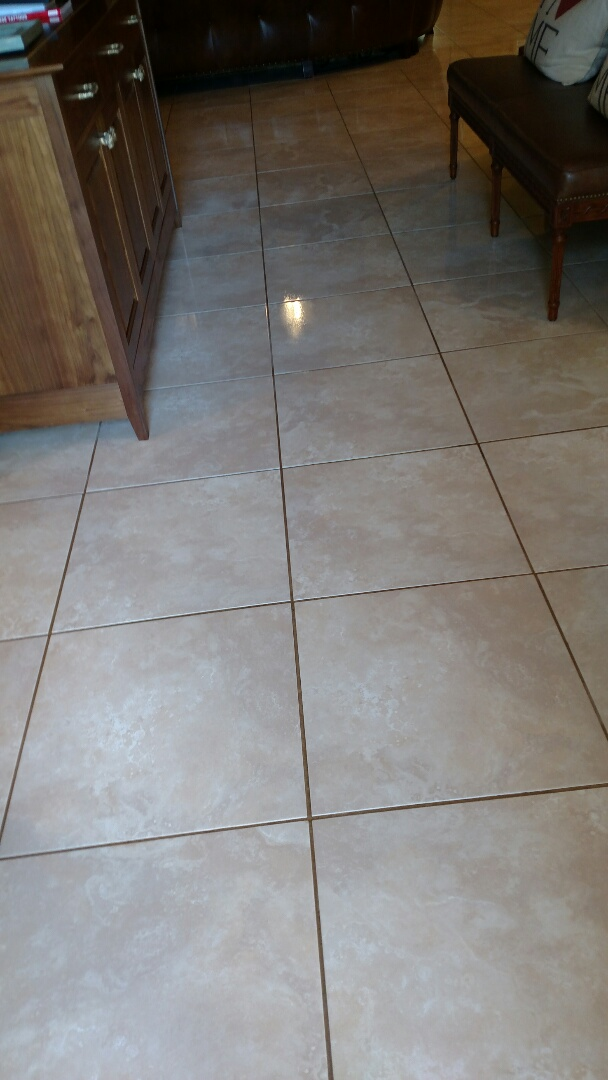 Gilbert, AZ - Cleaned carpet & tile and extracted pet urine for a new PANDA family in Gilbert, AZ 85295.