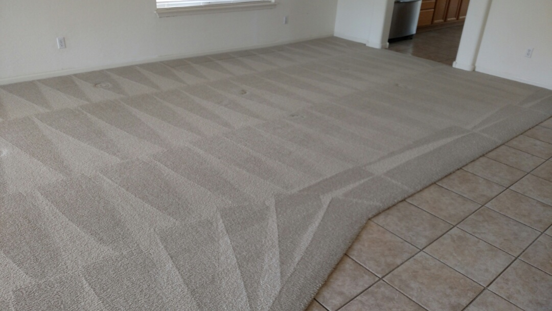 Chandler, AZ - Cleaned carpet for a new panda customer in Chandler, AZ 85248.