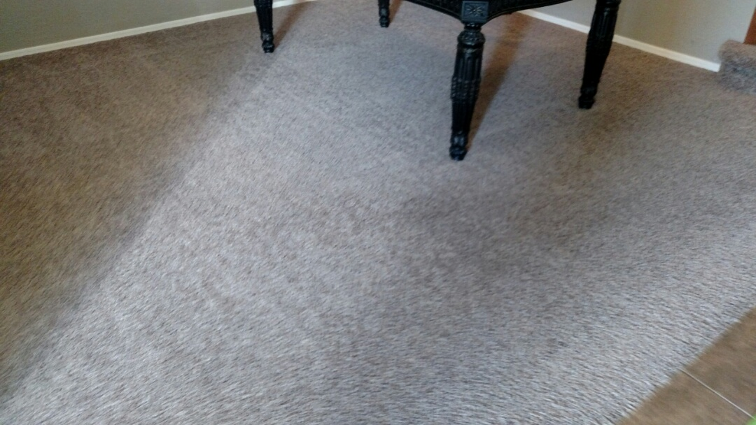 Cleaned carpet and tile cleaning & extracted pet urine for a new PANDA family in Lyons Gate, Gilbert, AZ 85295.