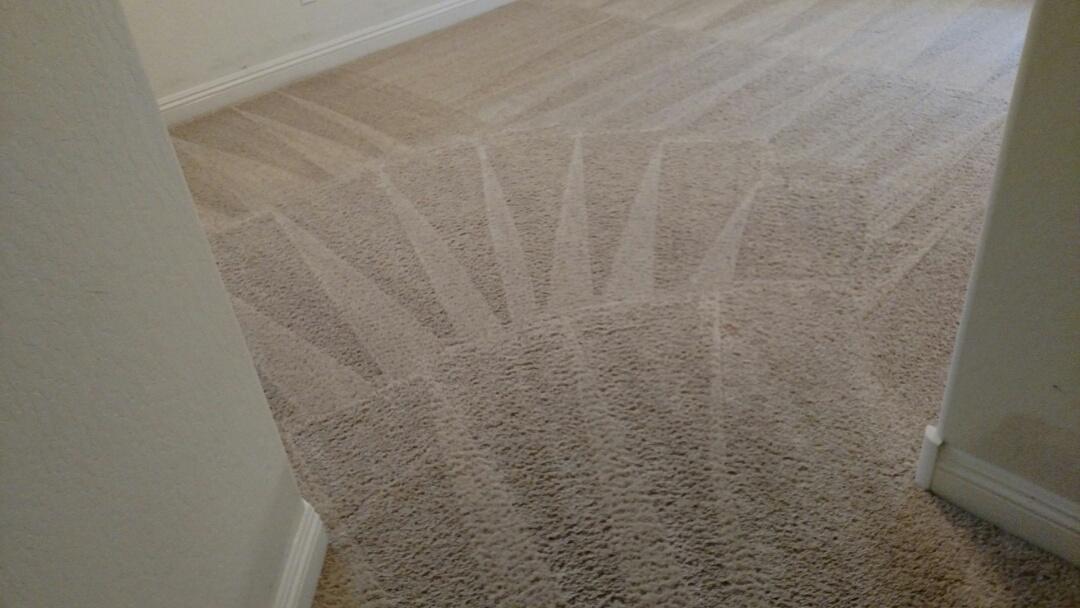 Gilbert, AZ - Cleaned carpet for a new PANDA family in Gilbert, AZ 85296