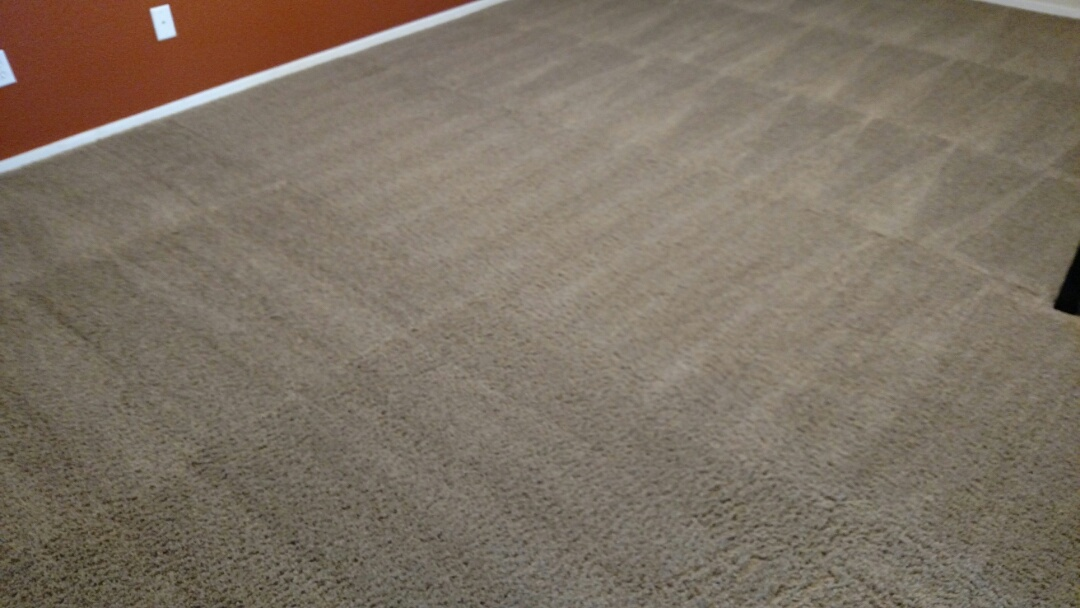 Cleaned carpet and upholstery for a regular PANDA family in Gold Canyon, AZ 85118.