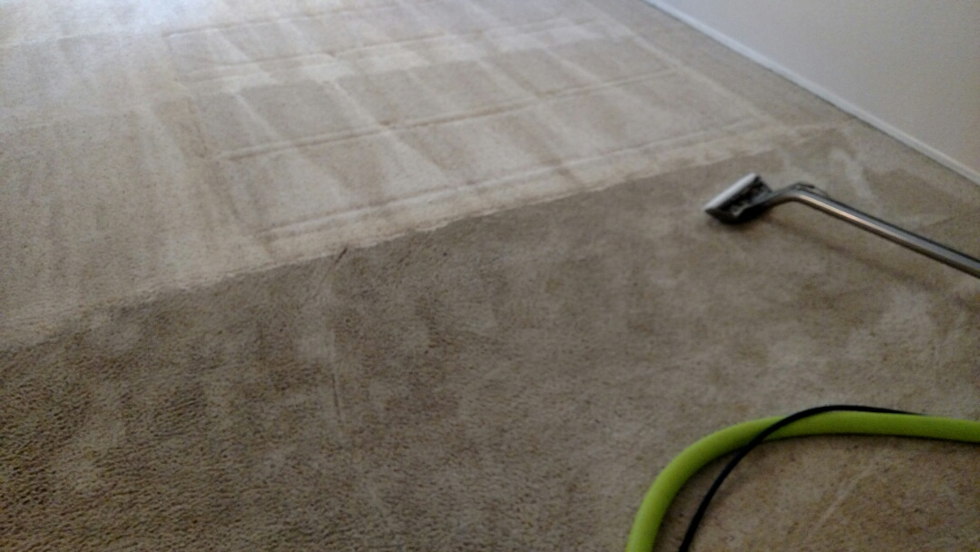 Chandler, AZ - Cleaned carpet and tile for a new PANDA family in Chandler, AZ 85226.
