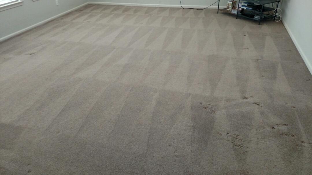 Gilbert, AZ - Cleaned carpet for a new PANDA family in Gilbert, AZ 85295.