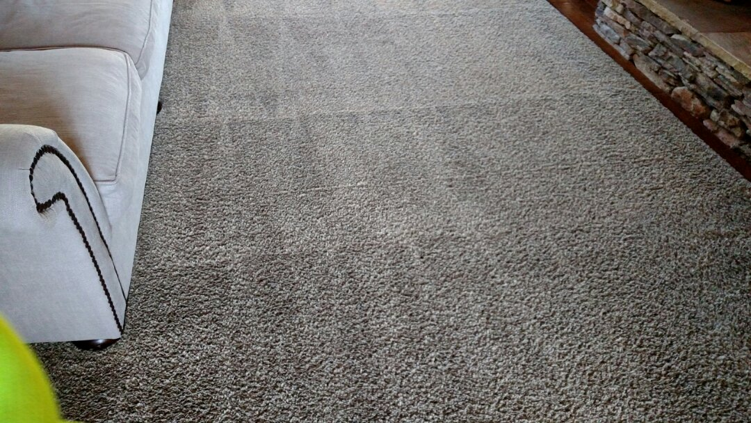 Cleaned area rugs and extracted pet urine for a regular PANDA family in Scottsdale, AZ 85260.